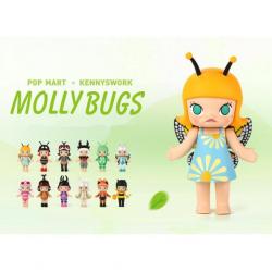 Molly Bugs
